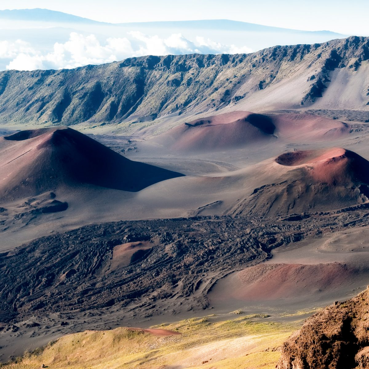 fun facts about Maui